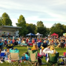 Naperville Residents Invited to Vote for 2019 Summer Concert Locations, Music Styles