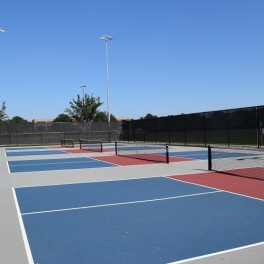 Chicago Pickleball Open  July 17-21 at Nike: Spectators Invited